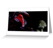 'Blood Forest' Greeting Card