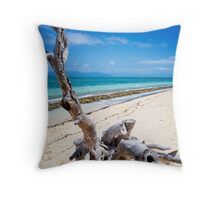 Beach landscape Throw Pillow