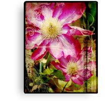 the clever clematis Canvas Print