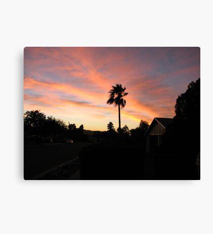 suburban paradise Canvas Print
