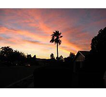 suburban paradise Photographic Print