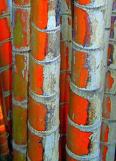 Bamboo Art (2). by Larry Davis