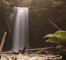 MARRINERS FALLS, VICTORIA by Eamon Fitzpatrick
