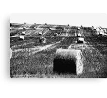 Harvest Trilogy-B/W Canvas Print