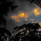 Bright through darkness by Owen Kaluza