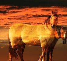 Equestrian Heaven by Dixiepix