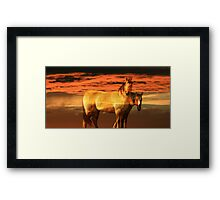 Equestrian Heaven Framed Print