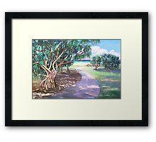 Ballina Beach Pathway Framed Print