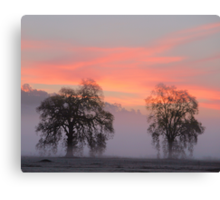 Two Trees in the Valley Canvas Print