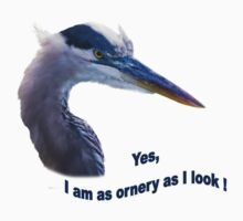 Blue Heron Ornery T-Shirt by Delores Knowles