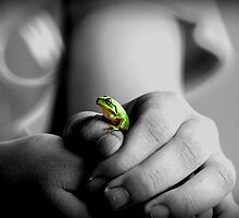 Little Green Frog by Mark Ingram Photography