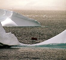 A boat amongst the bergs. by Michelle Dry