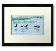 Sandpipers march Framed Print