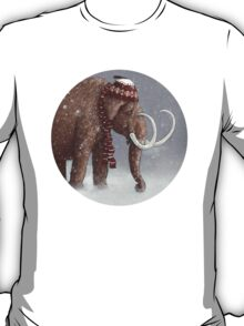 The Ice Age Sucked T-Shirt