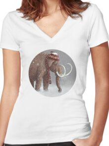 The Ice Age Sucked Women's Fitted V-Neck T-Shirt
