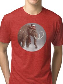 The Ice Age Sucked Tri-blend T-Shirt
