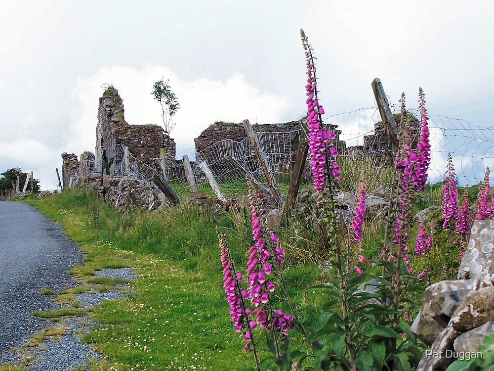 Roadside Ruin by Pat Duggan