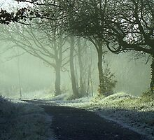 MISTY     LANDSCAPE    SUNRISE ON FROSTY TRACK by Rexcharles