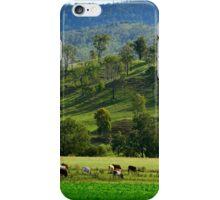 Grazing Cattle #1 iPhone Case/Skin