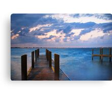 A Cool Wind Canvas Print