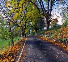Walks In The Autumn by Ian Mitchell