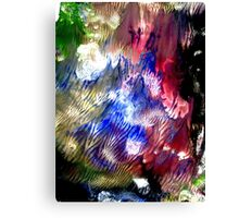 Multi Colored Acrylics Texture Canvas Print