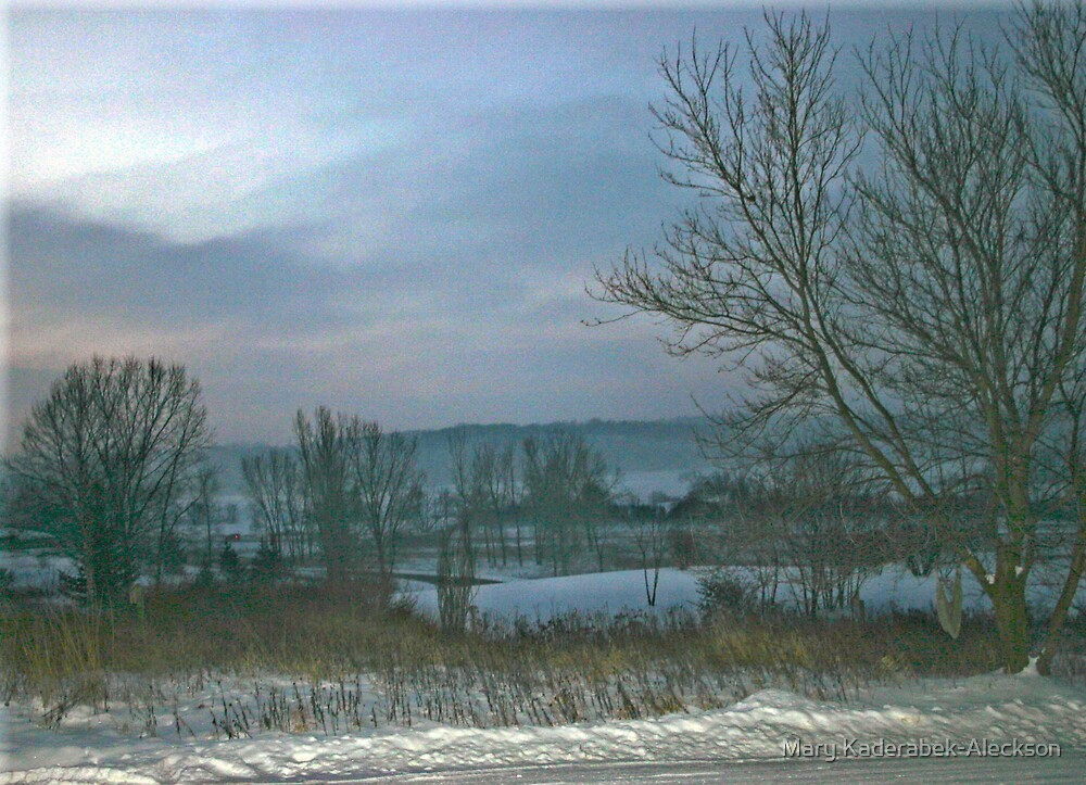 Cold Winter Morning by Mary Kaderabek-Aleckson
