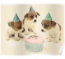 Vintage Puppy Birthday Card Poster