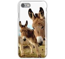 Donkey Trio iPhone Case/Skin