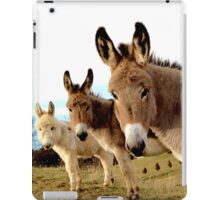 Donkey Trio iPad Case/Skin