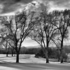 Winter Golf by windrider86