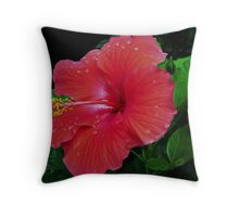 Shiney Red Hibiscus Throw Pillow