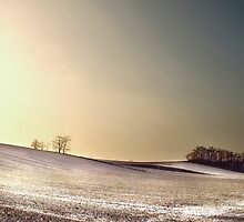 winter landscape by Dan Shalloe