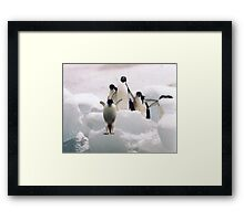 Look before you leap. Framed Print
