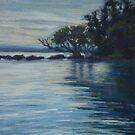 Pelican Island - a closer look by Terri Maddock