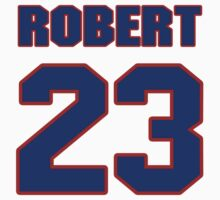 National Hockey player Rene Robert jersey 23 by imsport