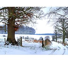 Bridleway with Snow Photographic Print