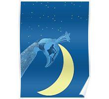 peacock sky Poster