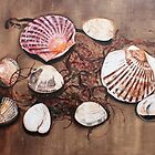 seafood shells by iconic-arts
