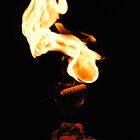 Fire Eater by Terry Runion