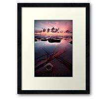Natures Face Framed Print