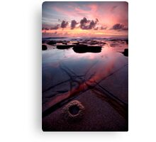 Natures Face Canvas Print
