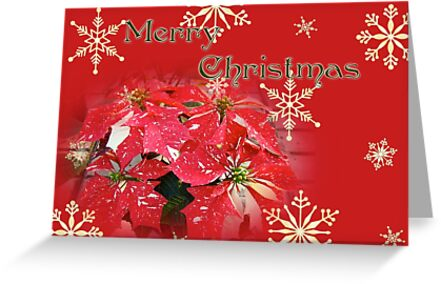 Merry Christmas Greeting Card - Poinsettia by MotherNature