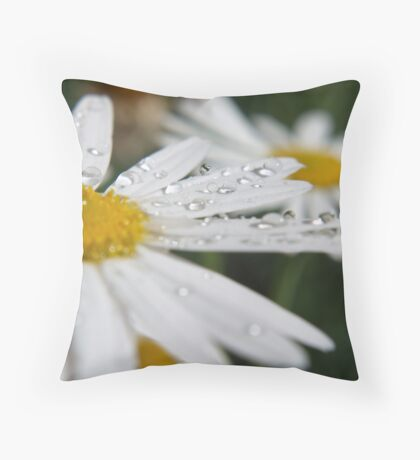 Daisy Dew Drops Throw Pillow