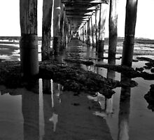 What's Under a Pier? by Leanne Robson