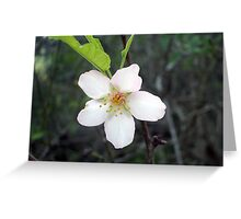 Wild tree flower Greeting Card