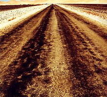 Remote road by Michelle Dry