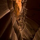 Zebra Slot Canyon by Nick Johnson
