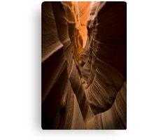 Zebra Slot Canyon Canvas Print