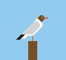 Black-headed Gull vector illustration by GA-Studio